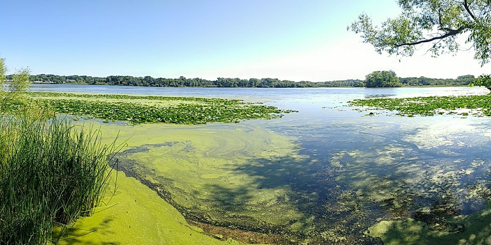 Battle Creek Lake