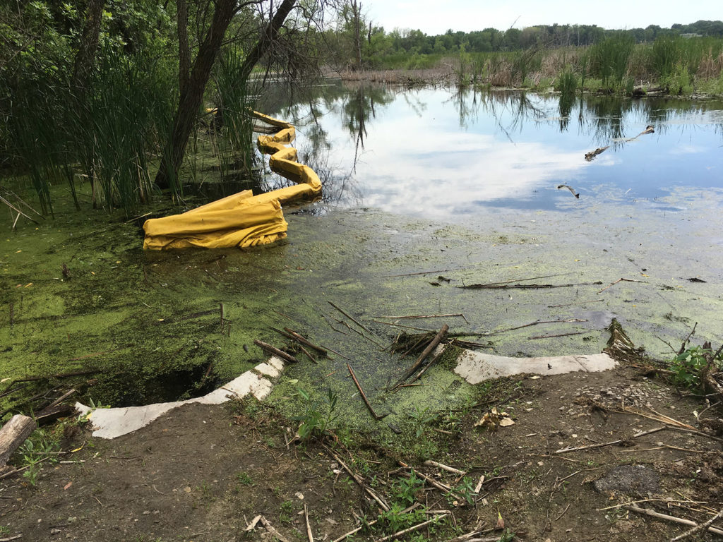 Grass Lake twin culverts