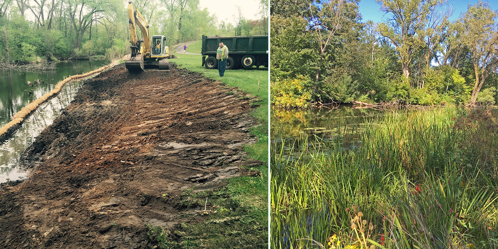 Wetland edge_before and after