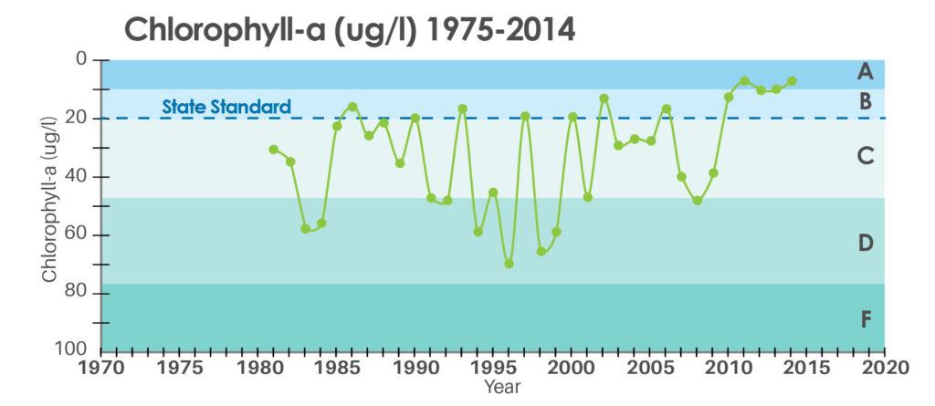 Chlorophyll graph