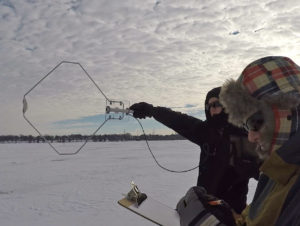 Winter carp tracking