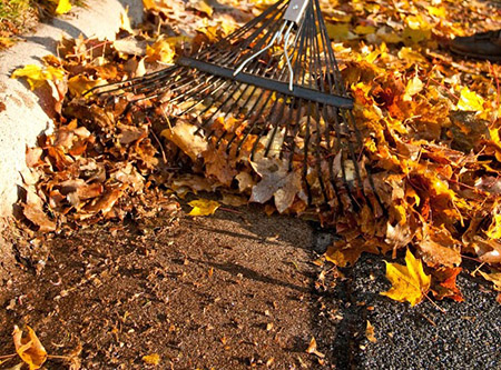 raking near curb
