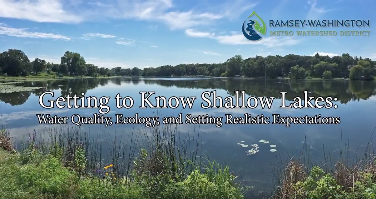 Getting to Know Shallow Lakes