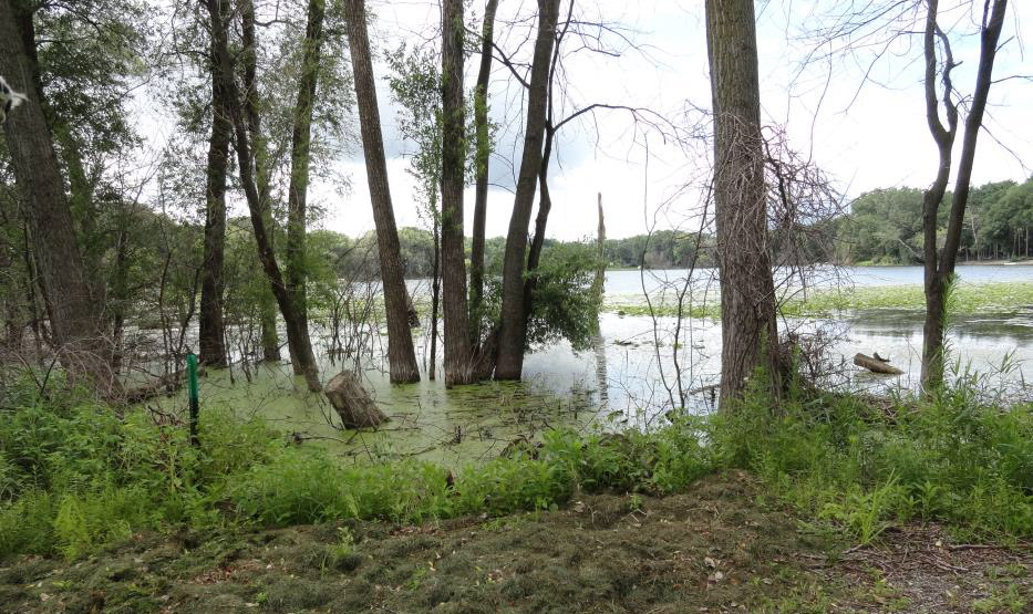 South end of Twin Lake
